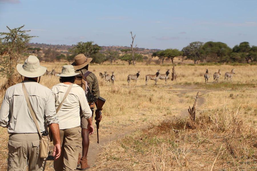Tarangire National Park best time to visit tanzania