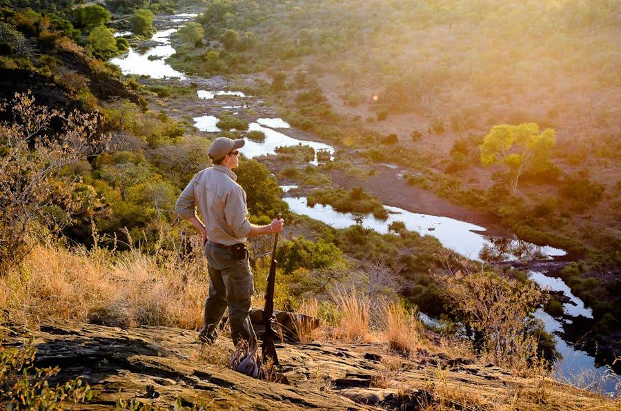 Kruger walking safaris