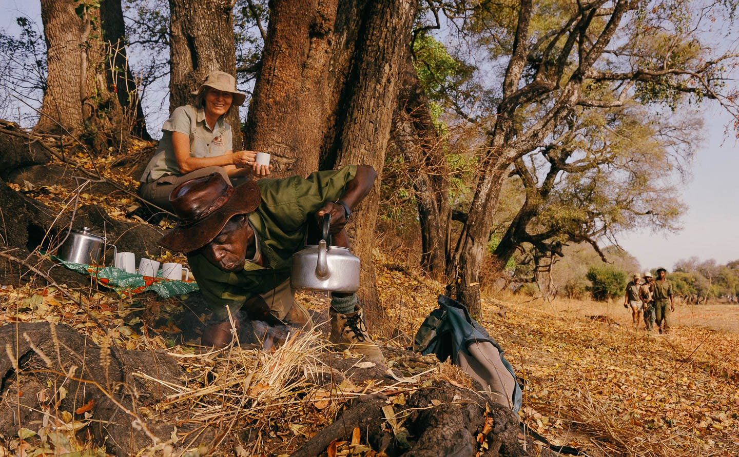 North Luangwa walking safaris