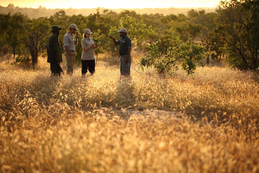 the-retreat-selous-walking-safari-tanzania