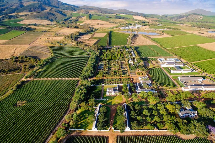 Cape Winelands Babylonstoren