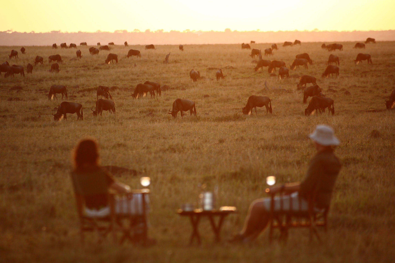 elephant-pepper-camp-kenya