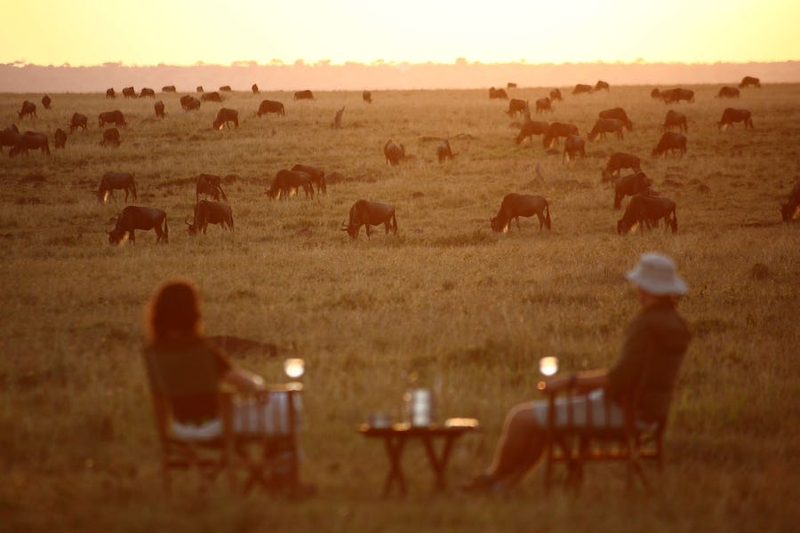 elephant-pepper-camp-kenya