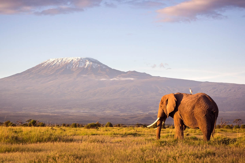 best time to visit Kenya - Elephant mountain amboseli and chyulu hills kenya timbuktu
