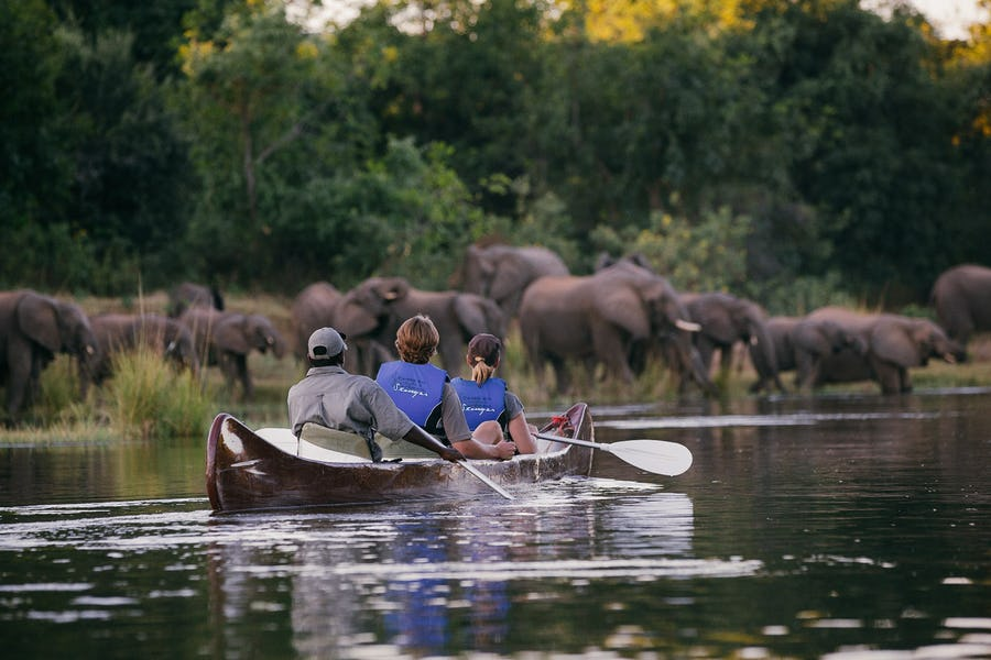 zambia travel guide african safari destinations