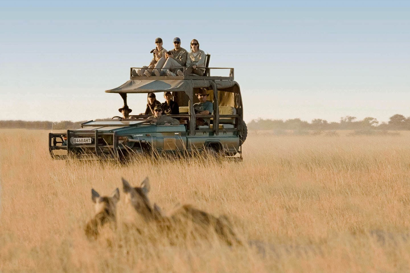botswana travel guide everything you need to know