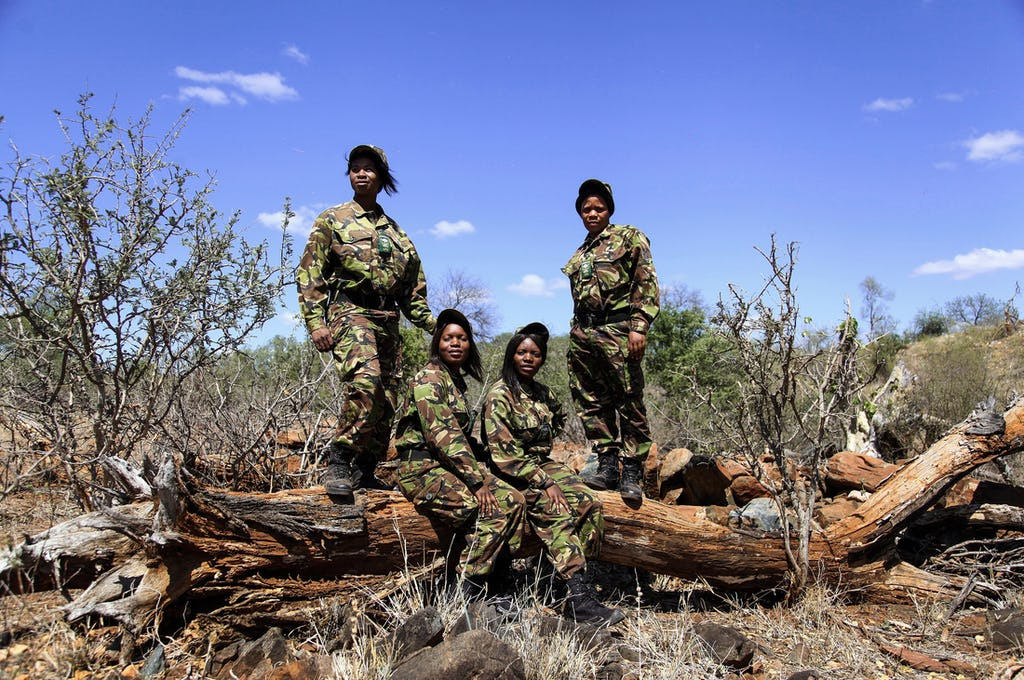 World Ranger Day Black Mambas wildlife conservation