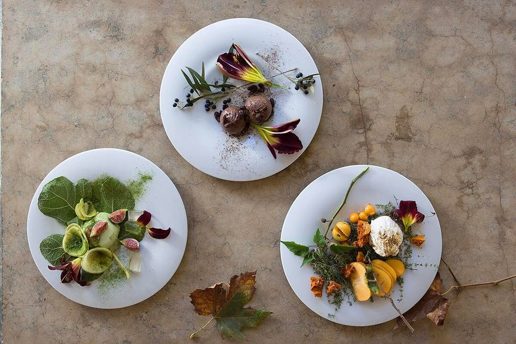 safari lodges for foodies babylonstoren winelands