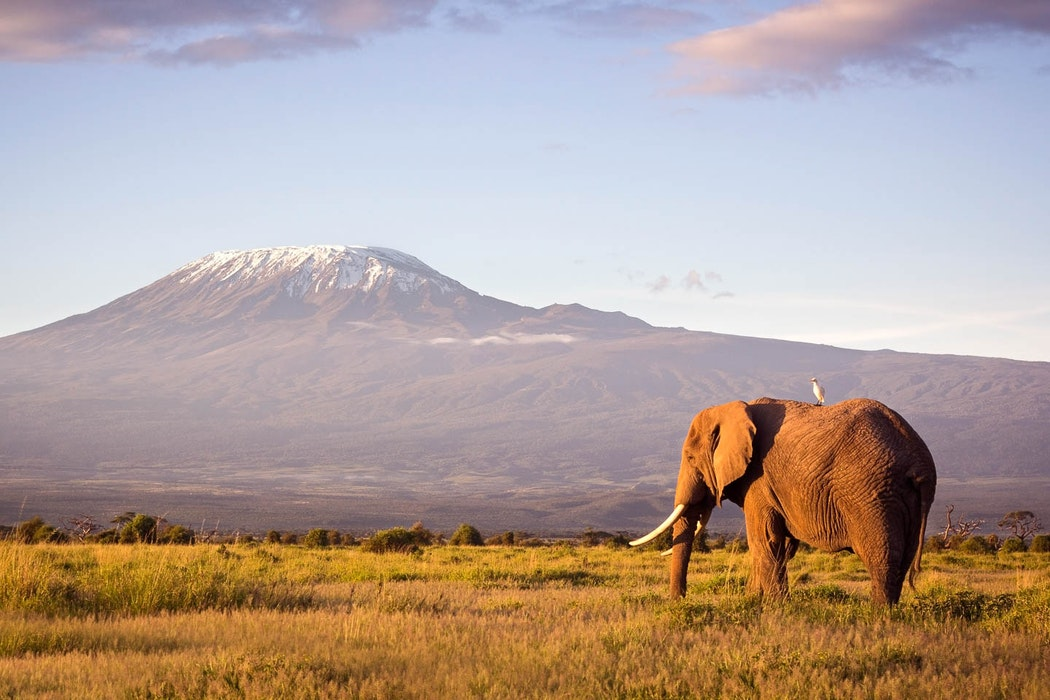 what to pack for Kenya