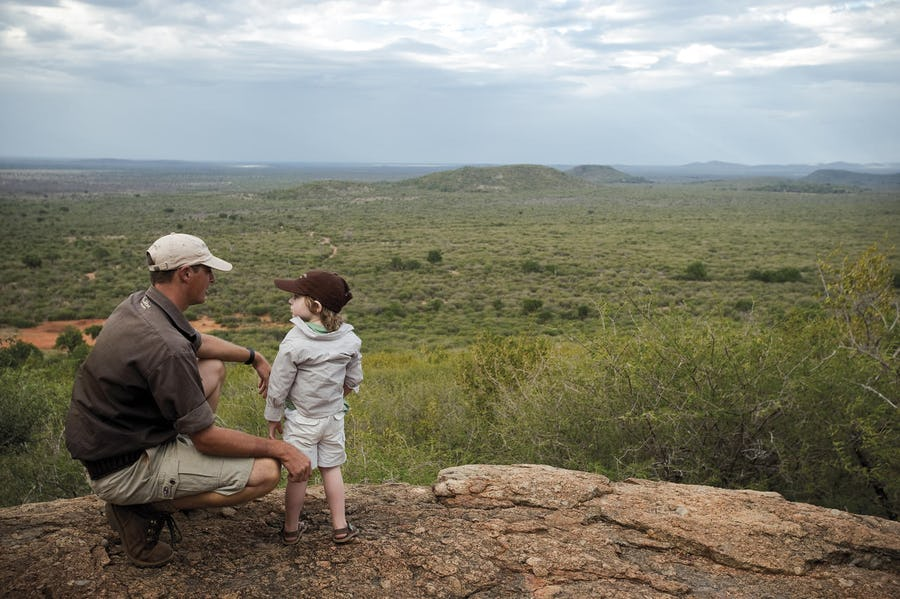 Planning a South Africa safari