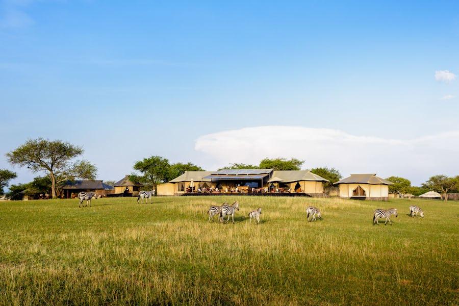 singita sabora top lodges where animals roam free