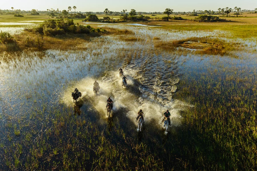 Horseback safari okavango botswana top 10 adventure safaris