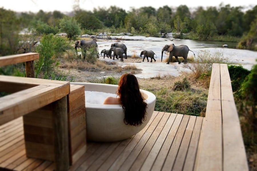 granite londolozie lodges where animals roam free