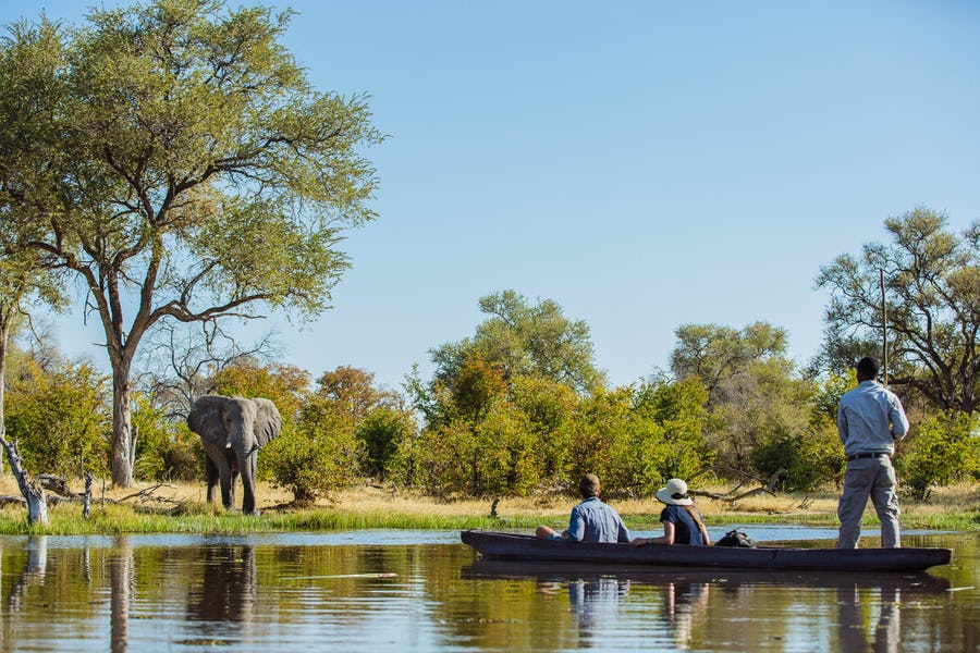 machaba camp okavango best of 2017