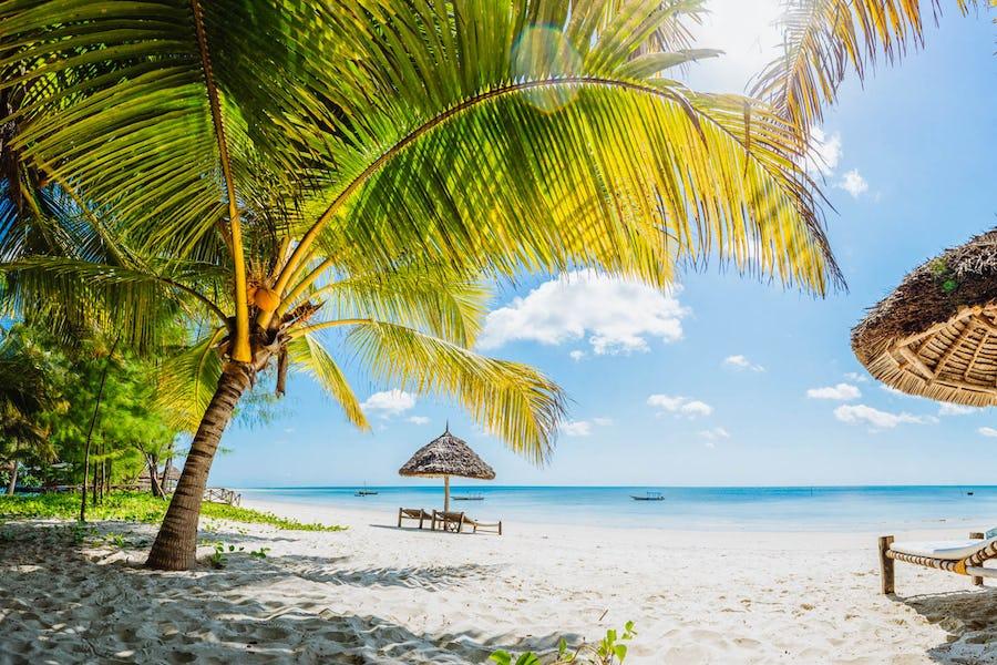 Butiama beach mafia island zanzibar