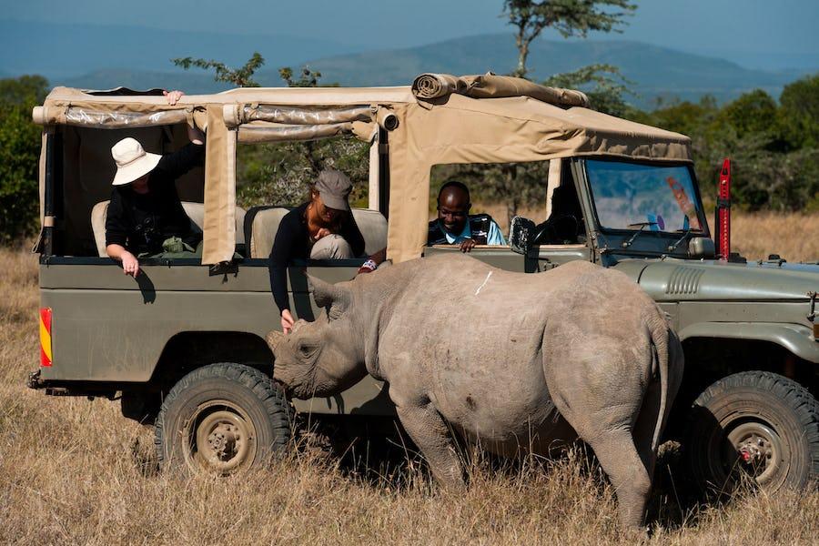 Ol Pejeta Bush Camp, Laikipia, Kenya