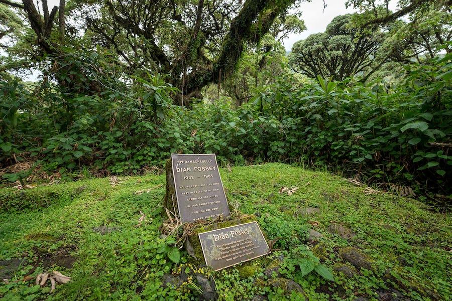 Dian Fossey Grave, Rwanda
