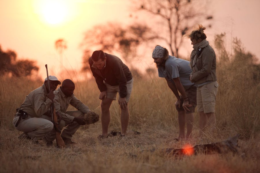 Sandibe Okavango Delta Botswana The Magic of a Walking Safari