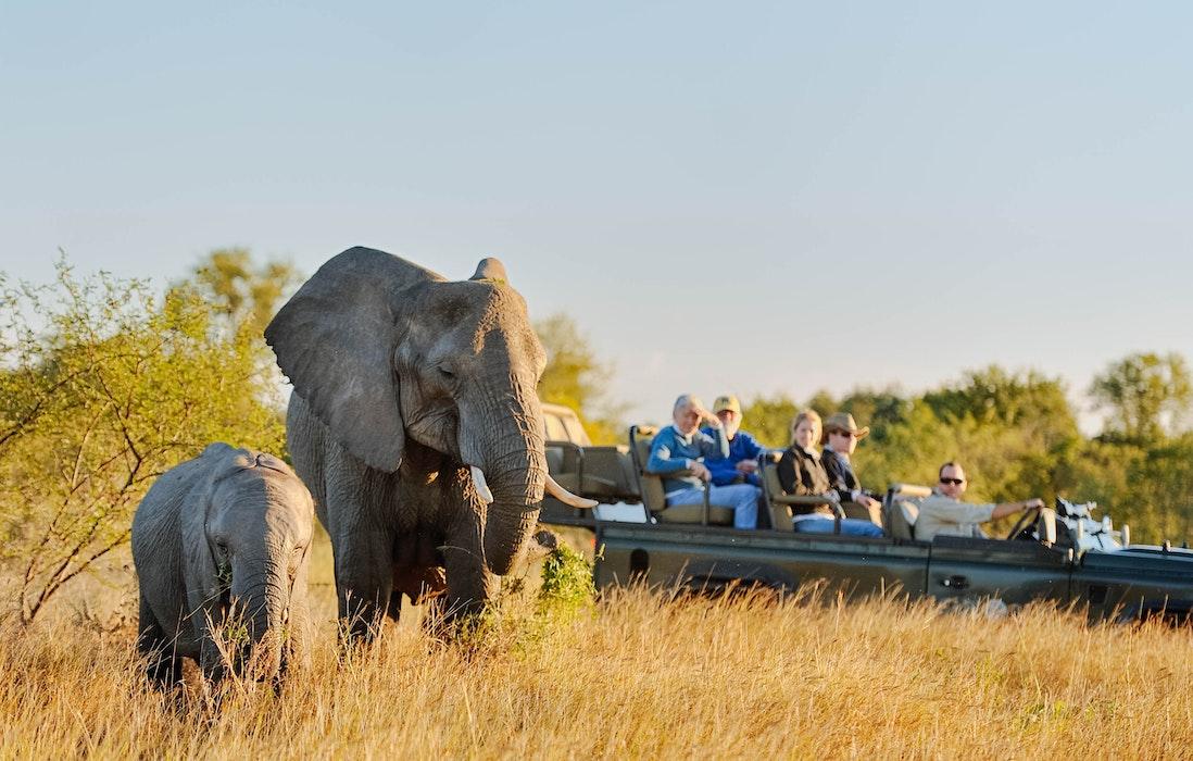 Best Big Five Safari Destinations Africa
