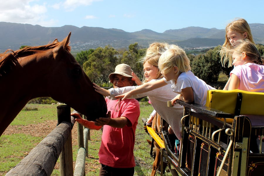 Imhoff Farm - Family activities in Cape Town