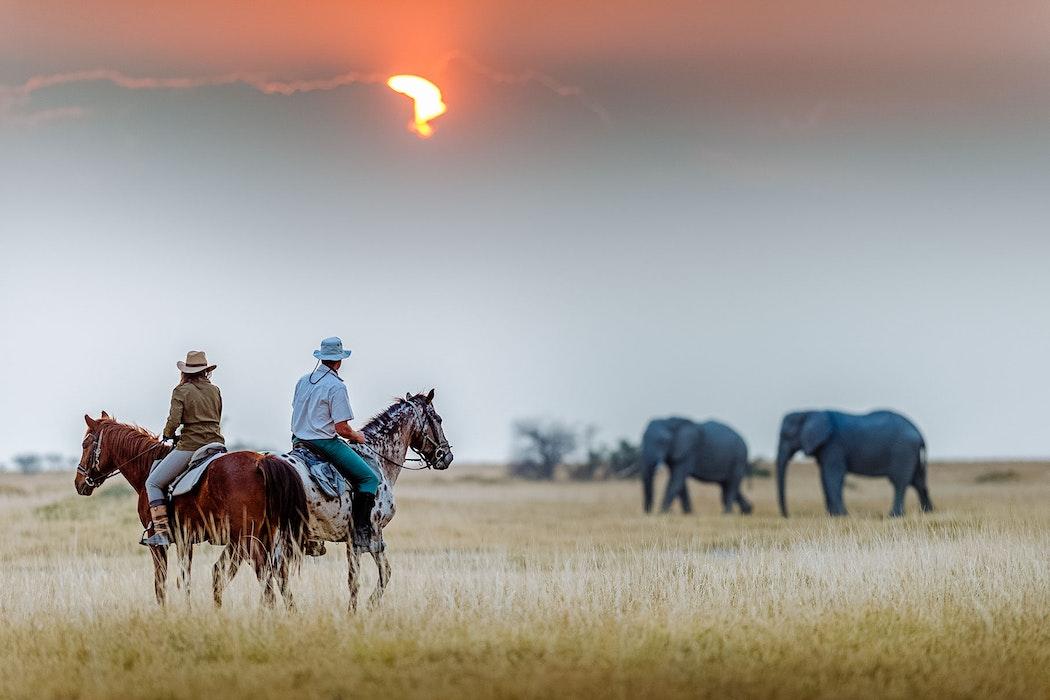 Botswana - Horseback safaris