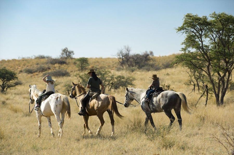 Kalahari - Horseback safaris