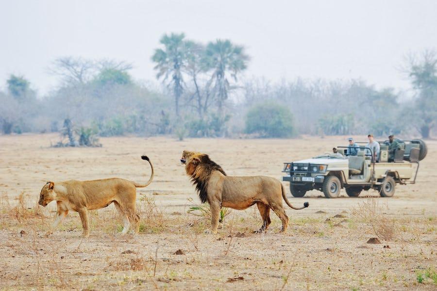 Lower Zambezi National Park - Malawi Travel Guide