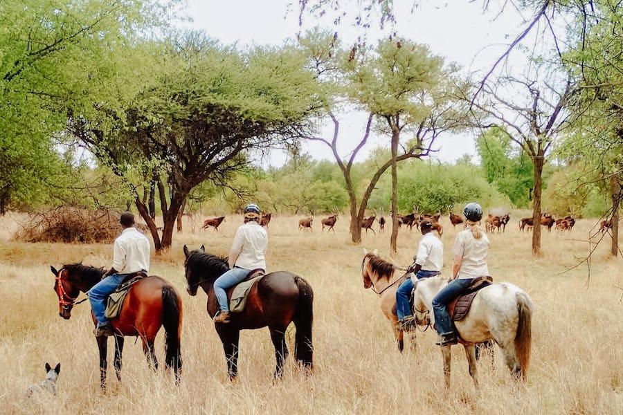 Zimbabwe - Horseback safaris
