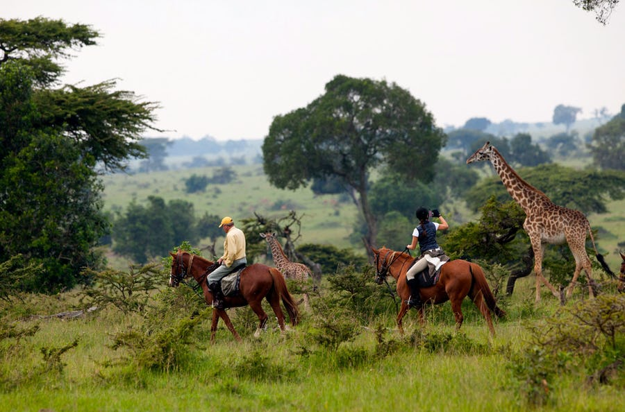Horse Safari - Alternative ways to experience Africa