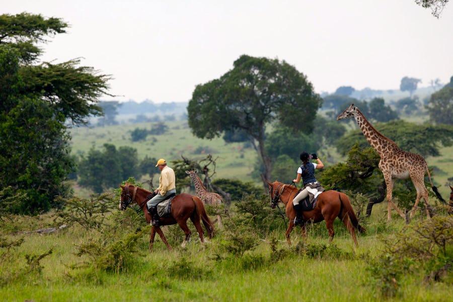 Masai Mara - Horseback safaris