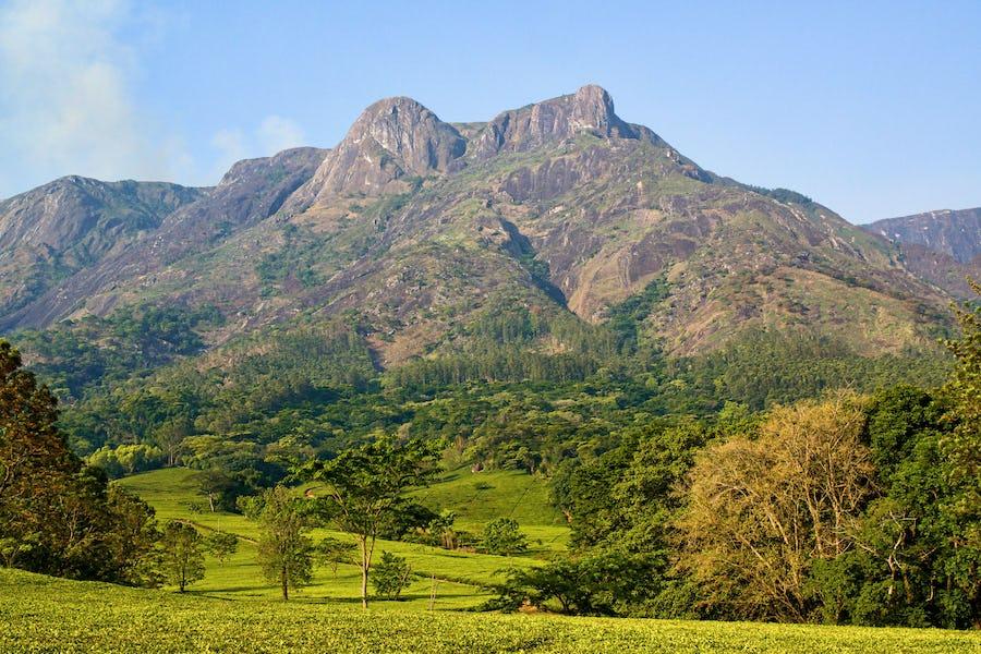 Mount Mulanje - Malawi Travel Guide