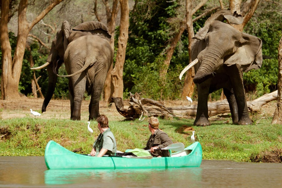 Lower Zambezi - Alternative ways to experience Africa