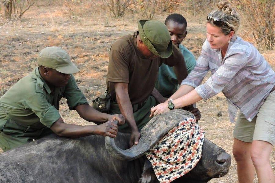 Rachel McRobb - Women in Africa