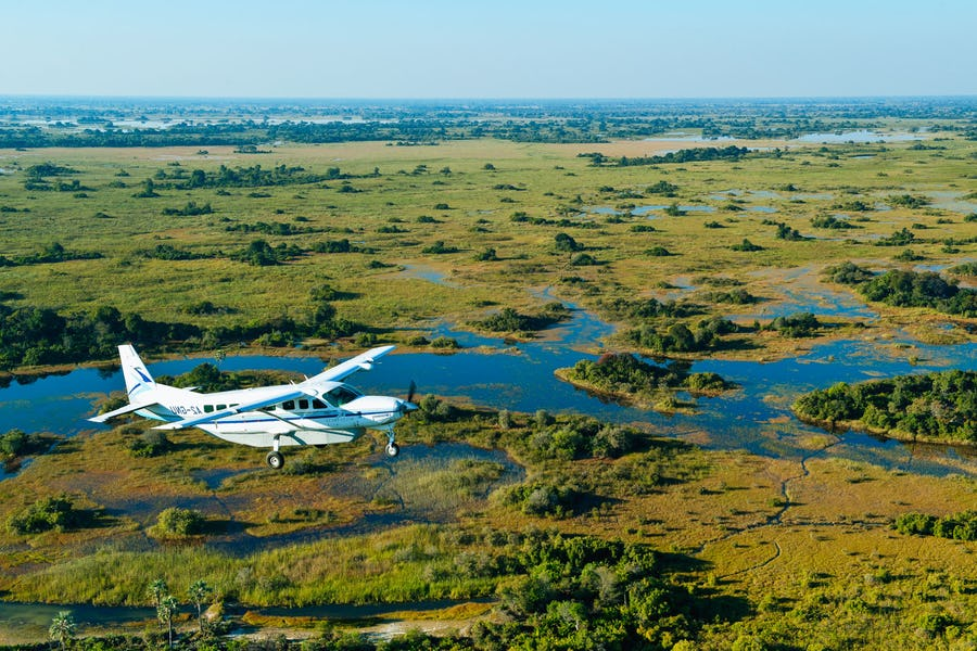 Okavango Delta - plan a safari