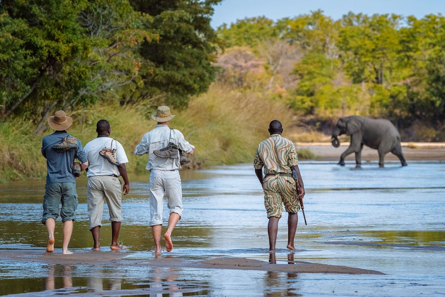 Mfuwe Walking Safari - plan a safari