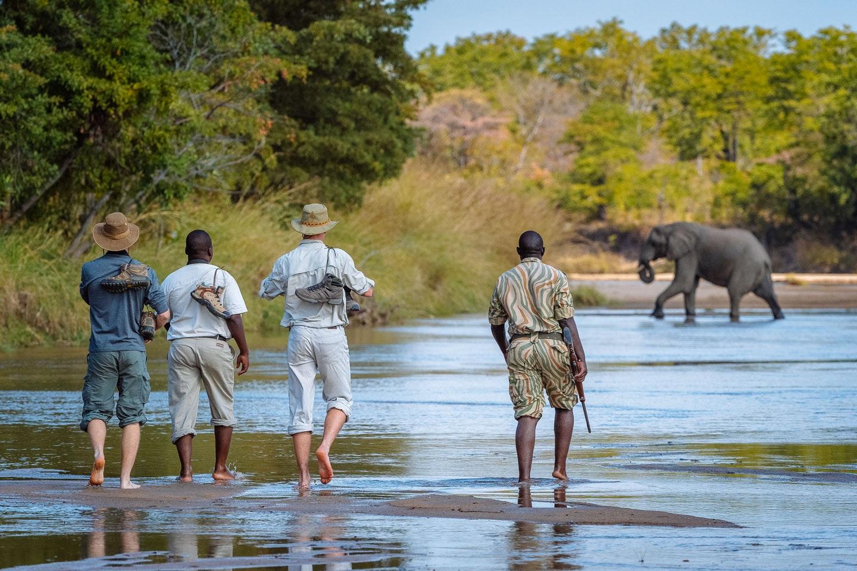 Mfuwe Walking Safari - plan a safari