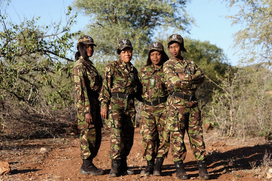 Black Mambas at Pondoro Lodge Kruger Conservation in South Africa