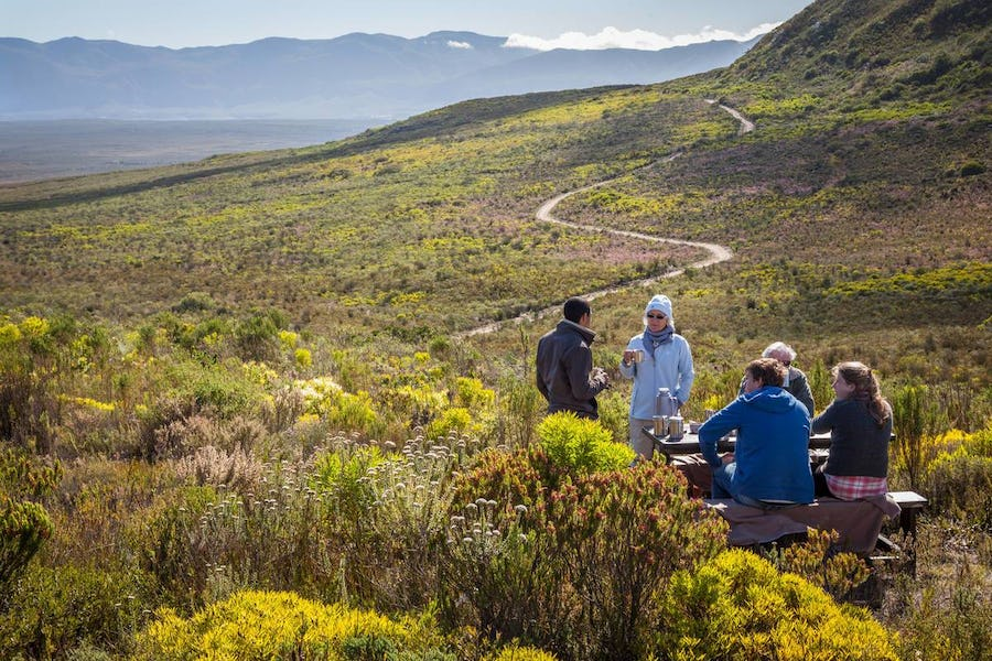 Grootbos flora and fauna Conservation in south africa