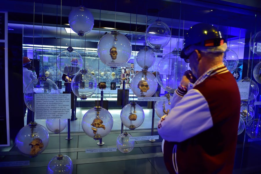Cultural experiences in Africa - cradle of humankind
