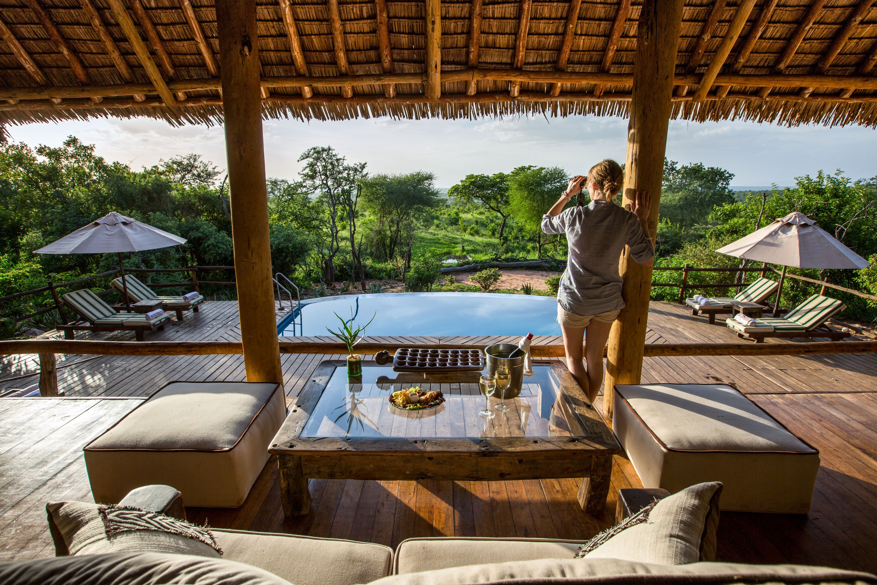 Safari essentials - tarangire treetops