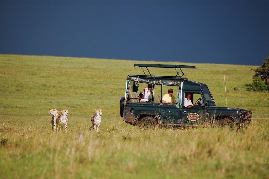 A day on safari - Mara intrepids