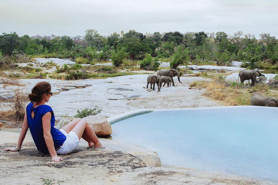 Safari essentials - londolozi