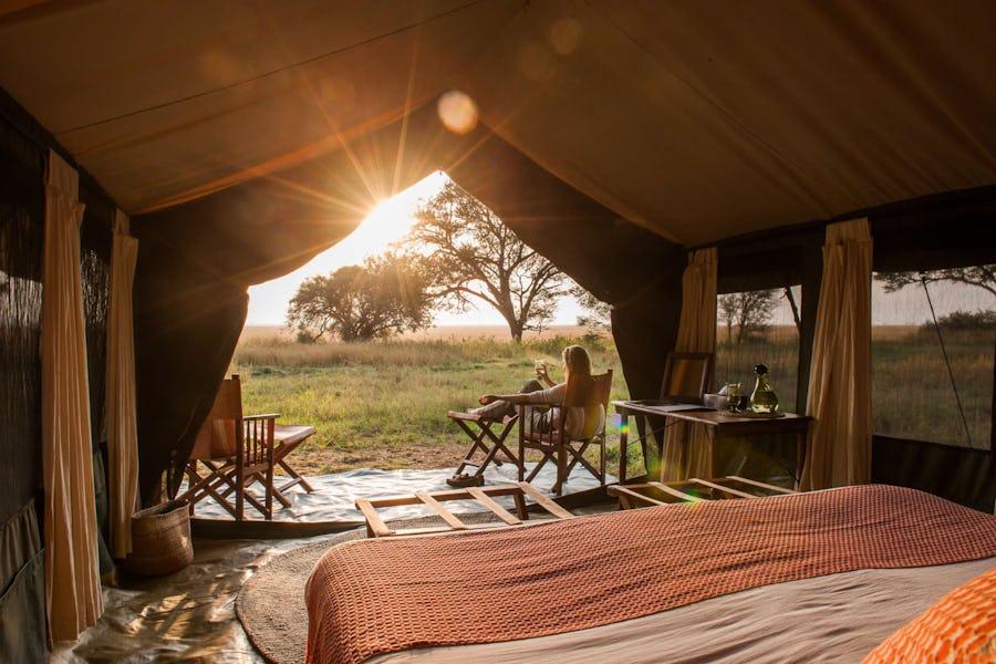Safari essentials - nomad