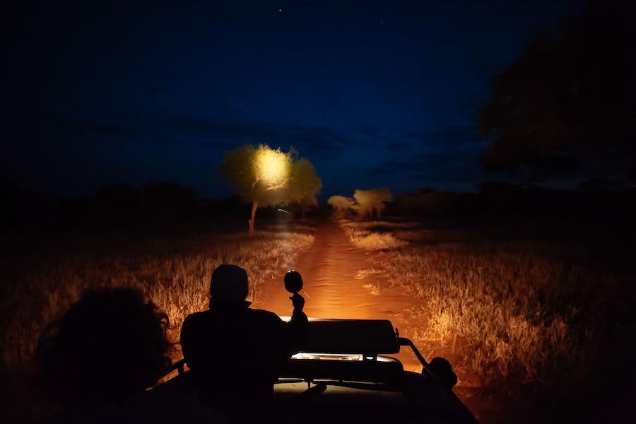 A day on safari - kuro