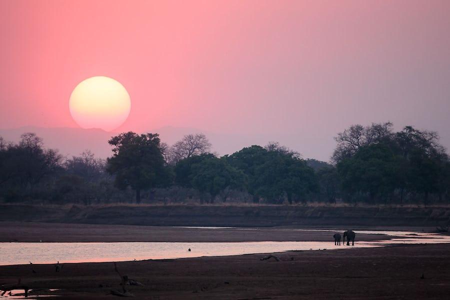 Tips for Photography on Safari - edwarde selfe
