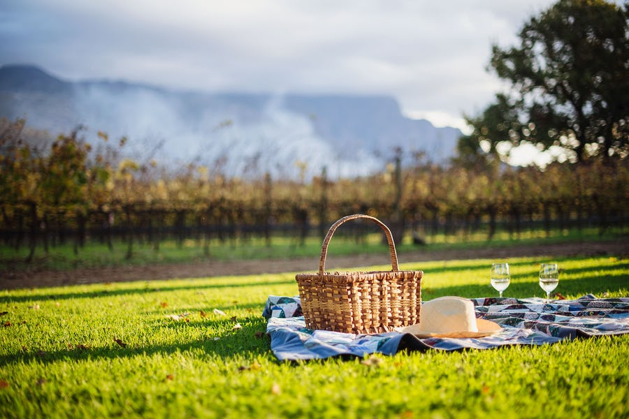 The best picnic spots in Cape Town - Last word