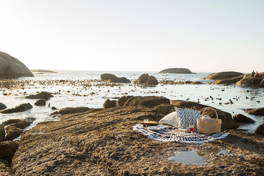 The best picnic spots in Cape Town - bakoven beta
