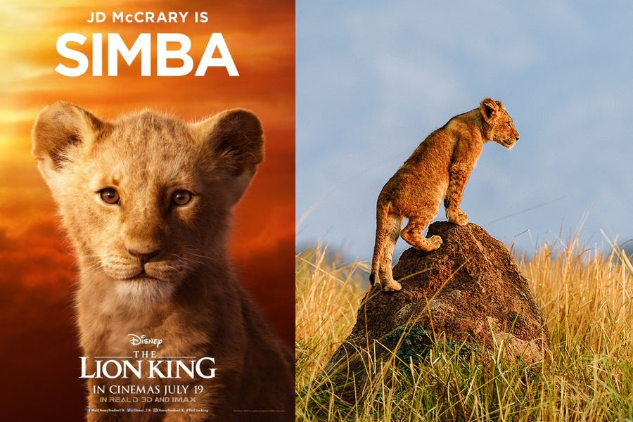 Meet Your Favourite Lion King Characters Timbuktu