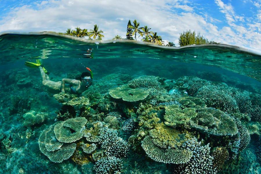 Reunion Island holiday - Le Recif