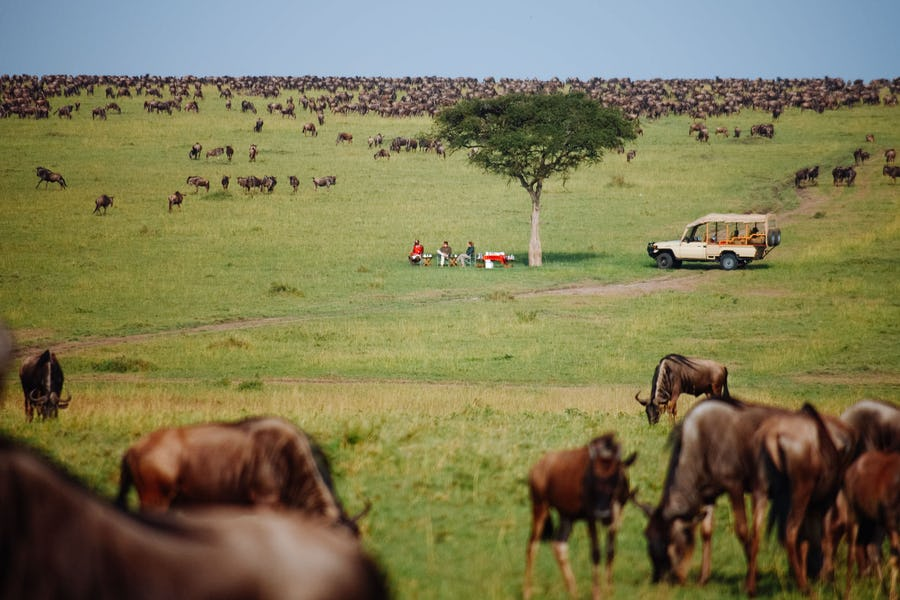 East Africa safari guide - naibor camp